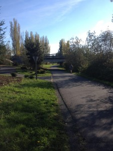 Runner on the Sammamish River Trail